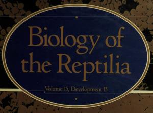 BoR Volume 15 Cover